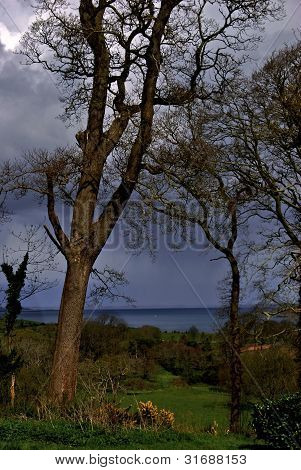 Rain Clouds Gather at Castle Ward
