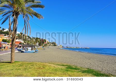 MALAGA, SPAIN - MARCH 12: El Palo Beach on March 12, 2012 in Malaga, Spain. This beach, full of typical beach restaurants, is about 1,200 meters long and 25 meters average width