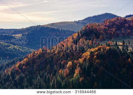 Beautiful Autumn Mountain Landscape. Forest On Slopes Of A Hills. Mixed Forest In Fall Colors In The