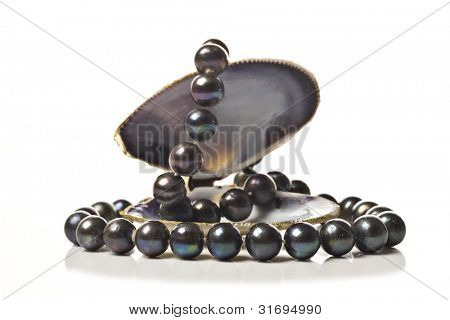String of black pearls in a sea shell on white poster