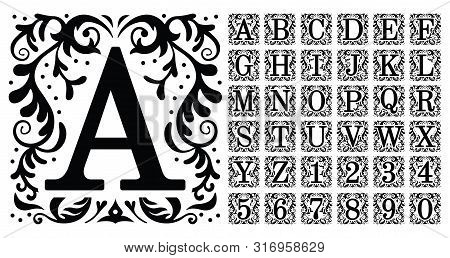 Vintage Monogram Letters. Decorative Ornamental Ancient Capital Letter, Old Alphabet Monograms And F
