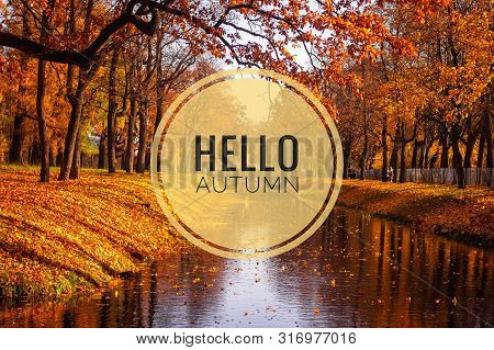 Banner Hello Autumn. New Month. Greeting Card. Golden Autumn. Autumn In The Park. The Text In The Ph