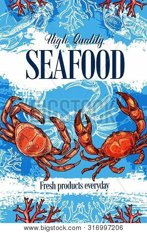 Seafood Store And Sea Food Products Market Shop Sketch Poster. Vector Lobster Crab And Marine Crusta