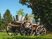 Od rustic wooden wagon in a garden in summer. Tomato plants in buckets on the wagon. poster