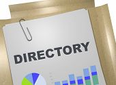3D illustration of DIRECTORY title on business document poster