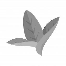 Vector Illustration Of Leaf And Leaves Logo. Set Of Leaf And Botanical Stock Symbol For Web.