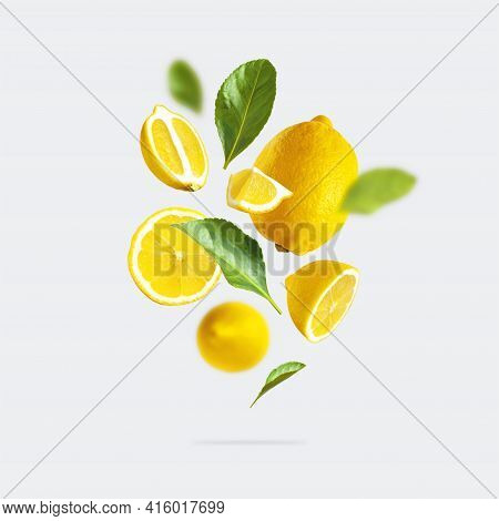 Juicy Ripe Flying Yellow Lemons, Green Leaves On Light Gray Background. Creative Food Concept. Tropi