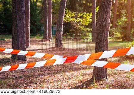 Red And White Barrier Tape, Fenced Off Dangerous Place Or Crime Scene In The Forest