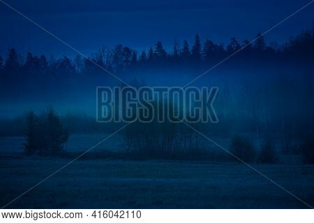 A Beautiful Dark Tree Silhouettes Against The Dark Blue Skies In Dawn. Springtime Scenery Before The
