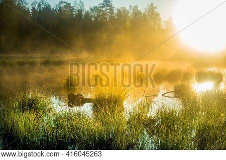 A Beautiful Spring Sunrise Mist Over The Flooded Wetlands. Warm Spring Scenery Of Swamp With Grass A