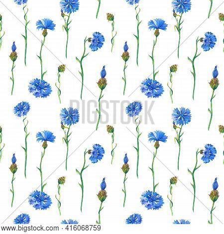 Blue Cornflowers On White Background. Watercolor Floral Seamless Pattern. Illustration With Flowers