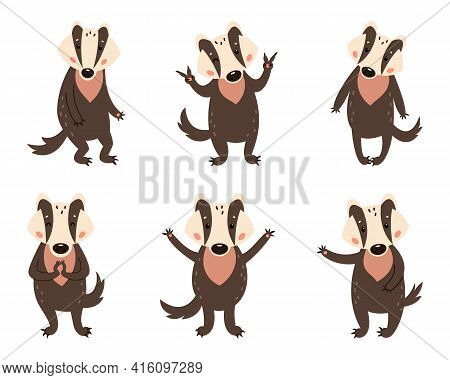 Badger On A White Background. Forest Animal. Vector Illustration Of Brock Mammal Species