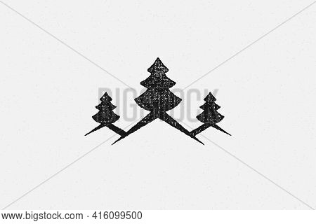 Spruce Trees Depicted Isolated On White Background Hand Drawn Stamp Effect Vector Illustration