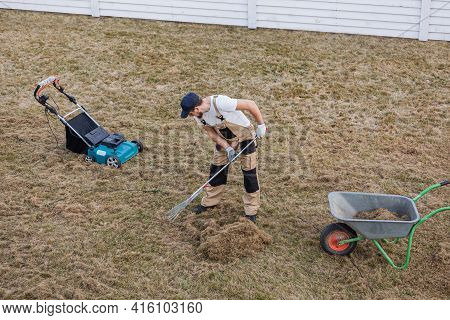 Scarifying Lawn With Rake And Scarifier, Man Gardener Scarifies The Lawn And Removal Of Old Grass