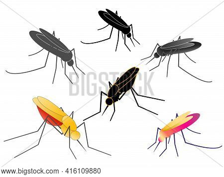 Different Anopheles Mosquitoes Set. Flat Vector Illustration.