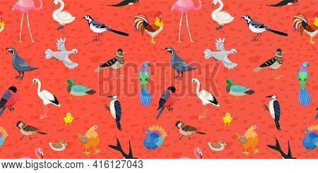 Seamless Pattern Of Different Birds, Poultry And Wild, Urban And Forest, Tropical Birds. Childish Or