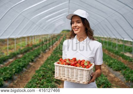 Front View Of Beautiful Female Wearing White Cap And Holding White Basket With Strawberries. Cute Br