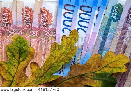 Yellow Oak Leaf On The Background Of Money. Rubles And Autumn Leaf. Autumn Promotions And Sales.
