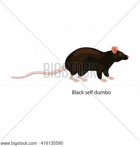 Rat Vector Icon.cartoon Vector Icon Isolated On White Background Rat.