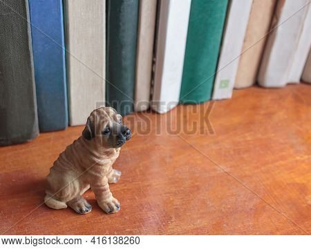 A Small Toy Dog Sits On A Dusty Bookshelf. Selective Attention Only To The Dog Against A Dusty Backg