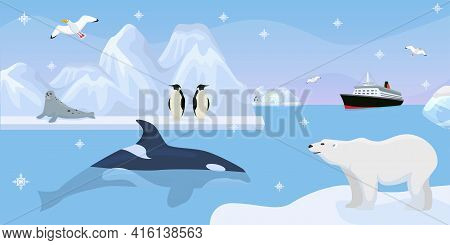 Antarctica Beautiful Wildlife, Vector Illustration. Cute Penguins, Seal On Iceberg, Whale In Blue Oc