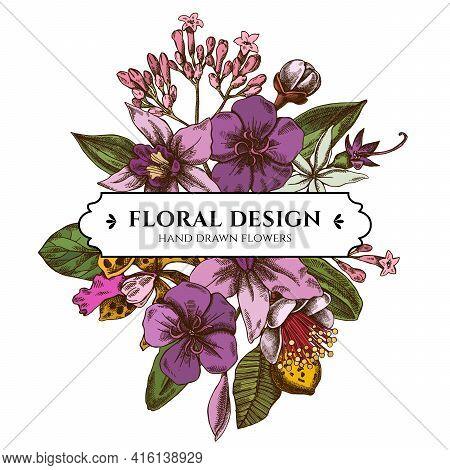 Floral Bouquet Design With Colored Laelia, Feijoa Flowers, Glory Bush, Papilio Torquatus, Cinchona,
