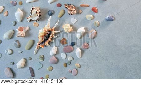 Many Seashells And Sea Pebbles On Golden Sand. Summertime, Vacation, Travel And Tourism Concept - Se
