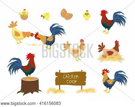 Chicken Vector Cartoon Chick Character Hen And Rooster In Love With Baby Chickens Or Hen Sitting On
