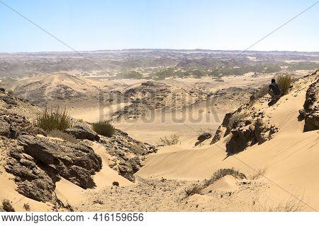 Skeleton Coast Desert, Namibia, January 11: Rear View Of Caucasian Man Photographing The White Sand