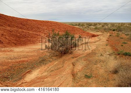 Red Sandy-clay Mountains With A Green Bush And Steppe In The Low Plan In Altyn-emel In Summer. In Th