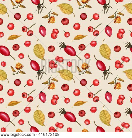Forest Berry Seamless Pattern. Lingonberry, Cranberry, Cloudberry, Rosehip, Holly Berries And Yellow
