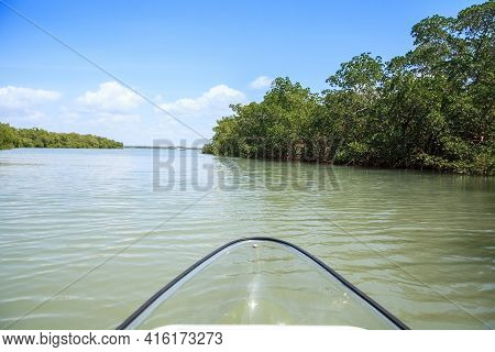 Mangroves Line The Waterway As A Clear Kayak Forges Through The Water At Lovers Key In Bonita Spring
