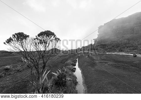 Landscape At The Top Of Mount Roraima In The Morning. Strange Shaped Black Volcanic Stones, Water An