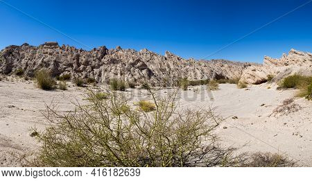 Panorama Of Geological Rock Formations And Arid Lunar Landscape  With Bush In The Andean Mountains,