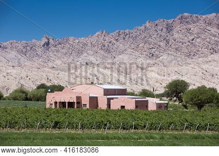 Cafayate, Argentina, December 24: Vineyards And Farm On The Famous Ruta 40 (route 40) With Abstract