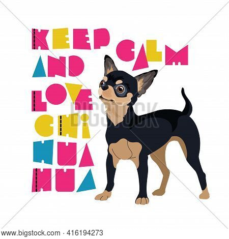 Dog Portrait And Stylized Chihuahua Inscription. Vector Flat Illustration.