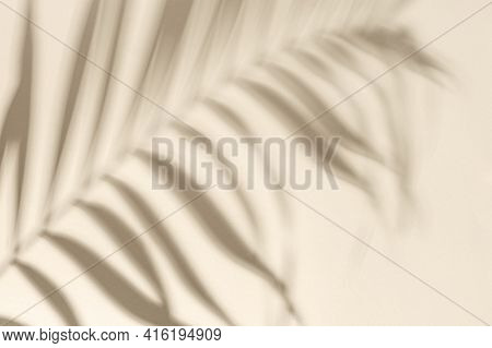 Summer Minimal Background With Shadow From Natural Palm Leaf On Light Yellow Paper With Copy Space.