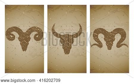 Vector Set Of Three Illustrations With Grunge Silhouettes Skulls Wild Buffalo, Bull And Ram On Old T
