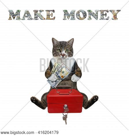 A Colored Cat Puts Dollars In A Red Metal Portable Safe. Make Money. White Background. Isolated.