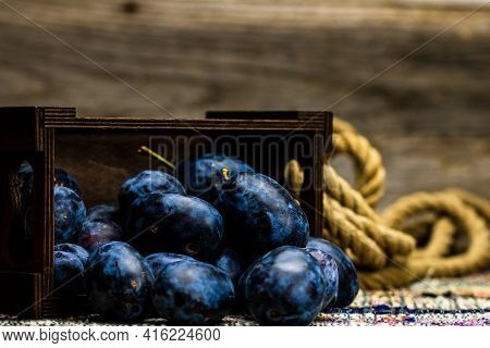 Ripe Blue Plums In A Wooden Crate In A Rustic Composition.