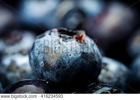 Fresh Blueberry Background. Texture Blueberry Berries Close Up. Ripe Blueberries With Copy Space For