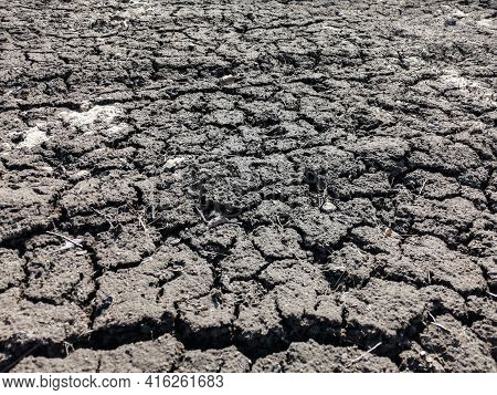 Cracks In Chernozem Soil After Drought. Clay Black Soil Is Prone To Cracking Due To Drought, But It
