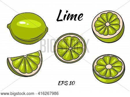 Set Of Juicy Limes. Lime, Whole And Half Cut. Cartoon Style. Set Isolated On White Background. Illus