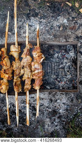 Vertical Image Of Toasted Chicken On Ecological Homemade Skewers. Outdoor And Outdoor Recreation. A