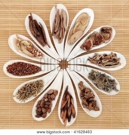 Chinese herbal medicine selection in white porcelain dishes over bamboo background.