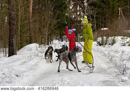 Mom And Baby Protect Themselves From Stray Dogs In Winter Forest
