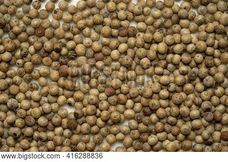 Close Up Of White Pepper Or Peppercorns As Background.