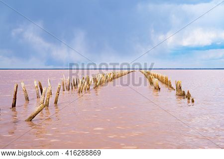 Landscape, Beautiful Sea View. A Unique, Salty Natural Phenomenon. Water Texture, Wave Of Pink Lake.