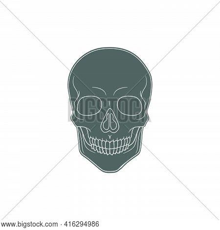 Human Skull Vector Icon Drawing