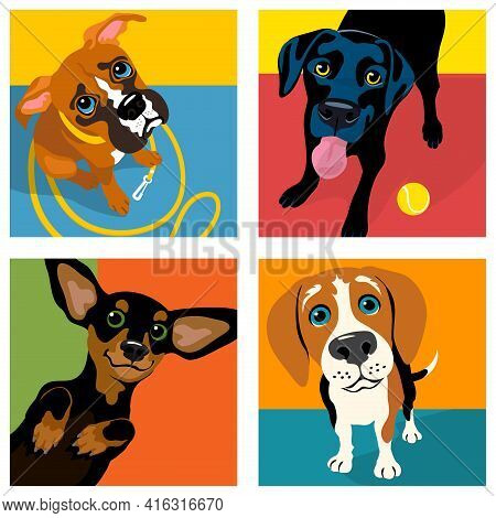 Cartoon Caricatures Of 4 Dog Breeds. Boxer, Black Labrador, Dachshund And Beagle. For Posters, Cards